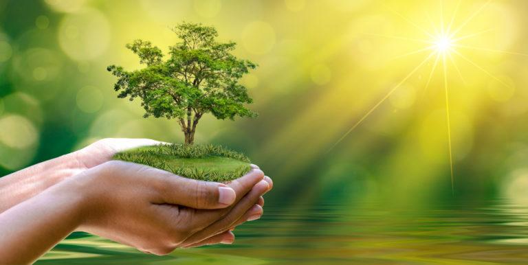 Empreinte Ecologique Recyclage Frogi Secure